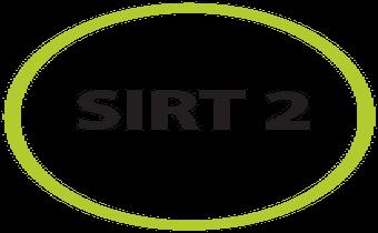 box_sirt-etap-2