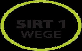 box_sirt-wege-etap-1