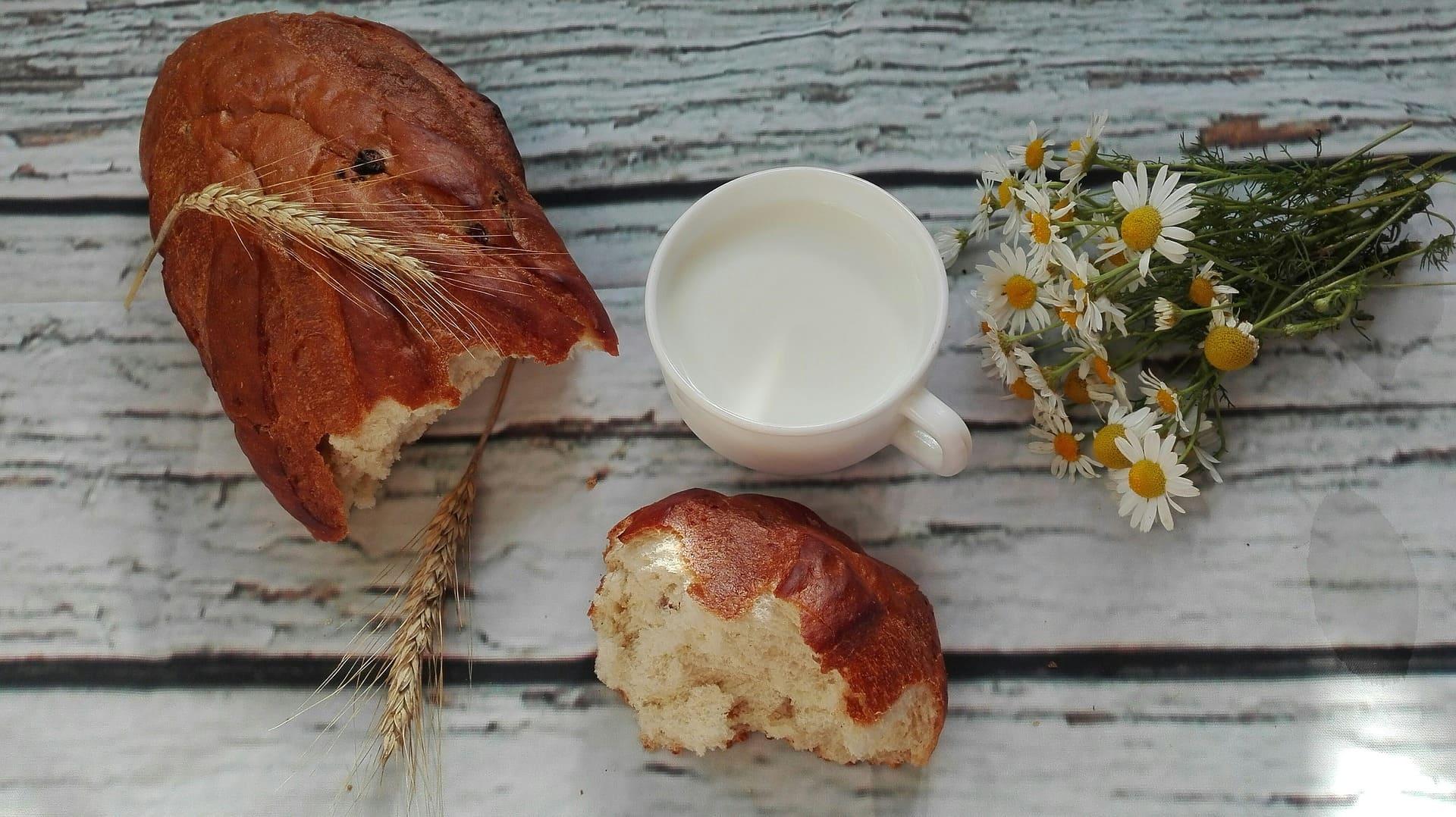 Gluten i laktoza - obalamy mity! Wywiad z dietetyk Emilią Gieradą